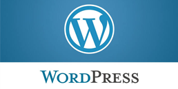 word press - Our Services